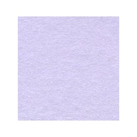 Violet Single Fold Card Size B (10 Pack)