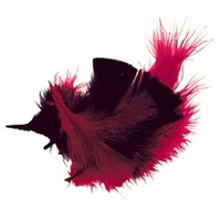 Feathers Red & Black