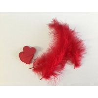 Feathers and Hearts Card Making Kit RED
