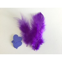 Feathers and Hearts Card Making Kit PURPLE
