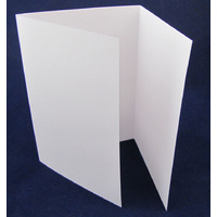 Three Panel Folded 300 gsm Cards x 10